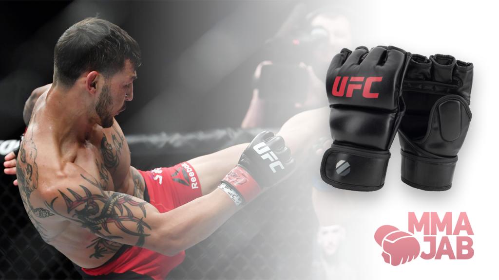 Перчатки для MMA / Шингарты - mmajab.com